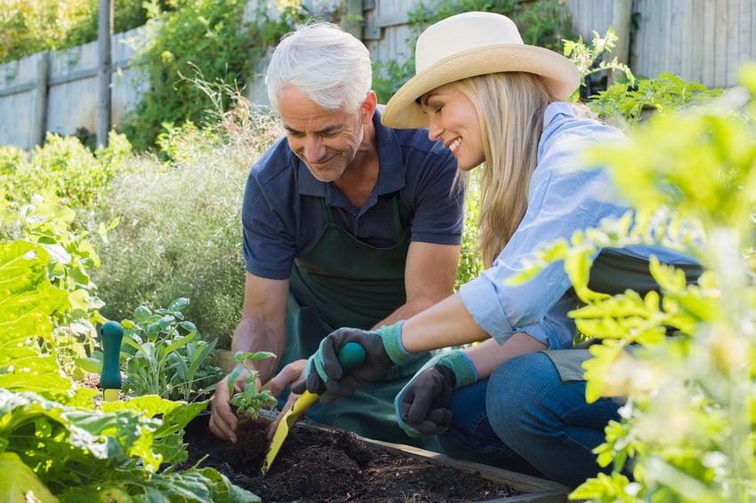 Gardening Pain Free